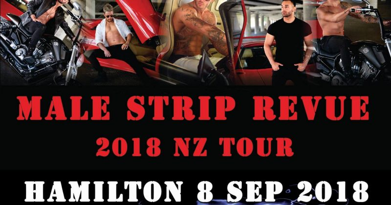 Wild Storm Male Strip Revue 2018 – Hamilton!  (8th Sept)